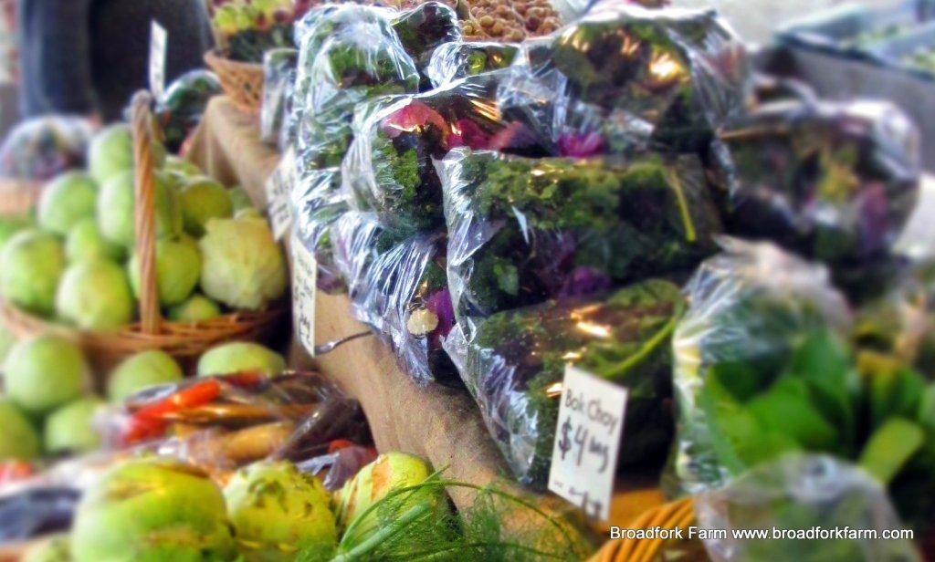 November Market Stand