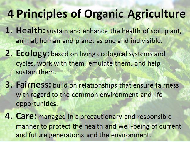 Principles of Organic
