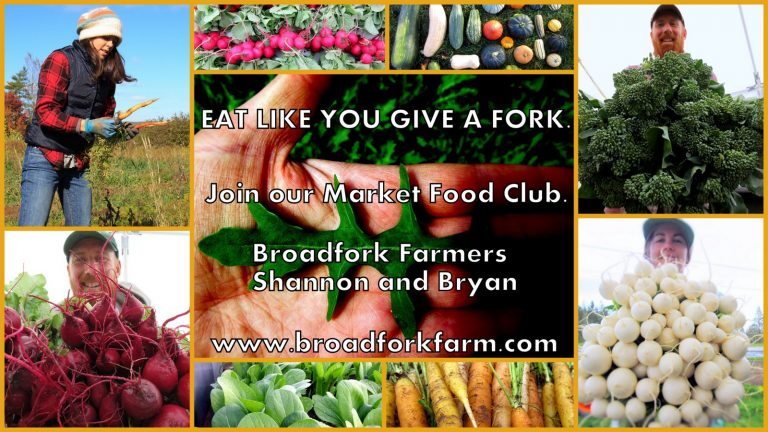 Join our Market Food Club